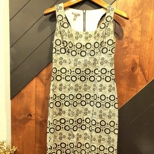 Cutest Cream & Black Muse Sundress